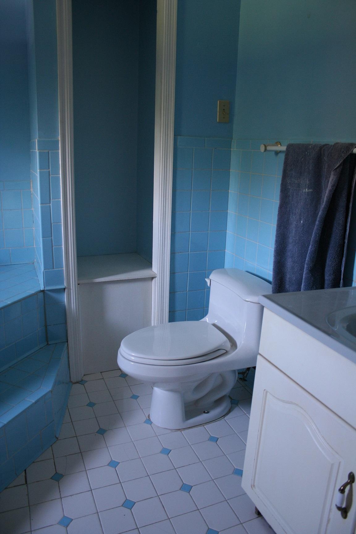 Operation blanton farm a blue blue bathroom remodel for Bathroom inspo