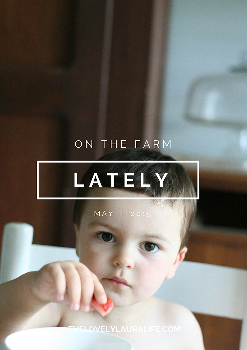 lately / may 2015 | thelovelylauralife.com